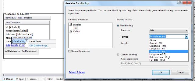 Configuração para apresentação do Campo Data na FormView