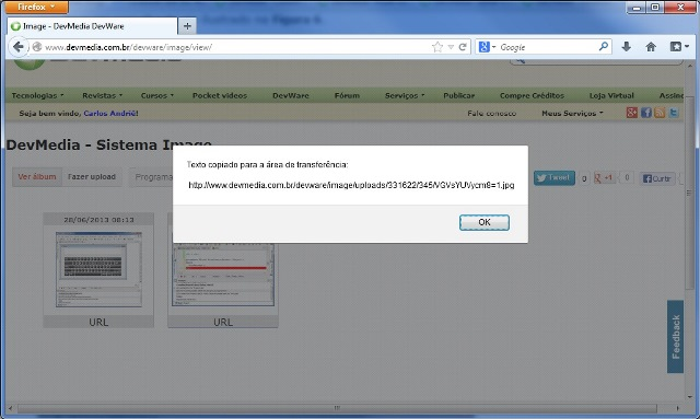 Mensagem informando que a URL da imagem foi copiada