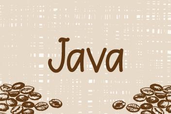TCarreira Programador Java